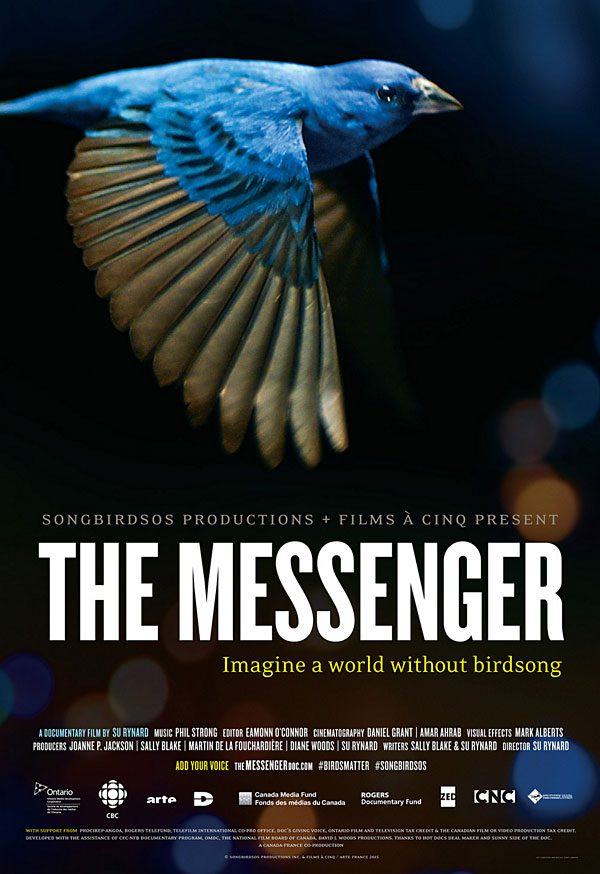 The Messenger Our Movie Review All About Birds