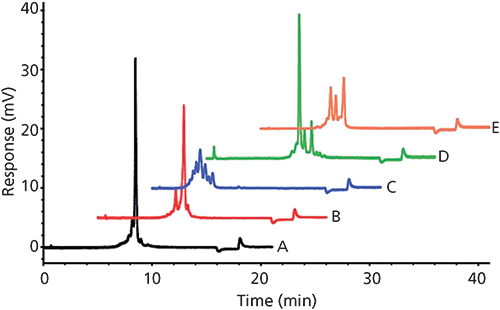 Resolving the Complexity of Biomacromolecules Using Multiple Modes - cation exchange chromatography