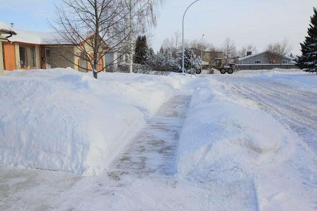 winteronmystreet