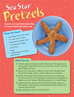 Sea Star Pretzels 250x328