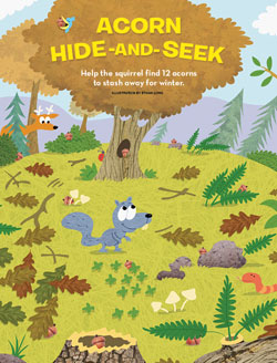 acorn hide and seek 250x