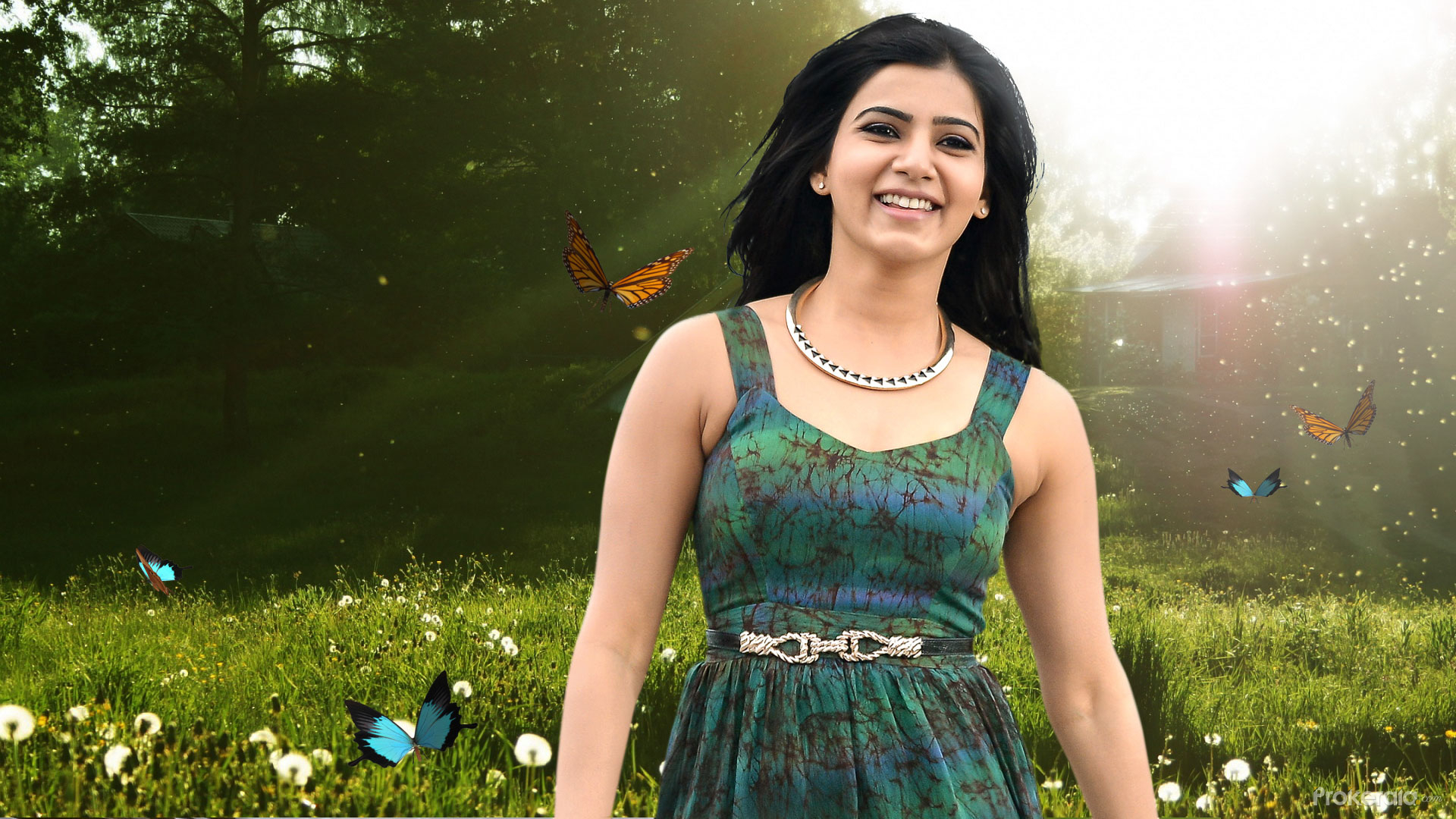 All Bollywood Girl Hd Wallpaper Samantha Hd Wallpaper For Mobile And Desktop