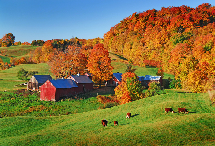 New Hampshire Fall Foliage Wallpaper Vermont Barns Vermont Real Estate Wade Treadway