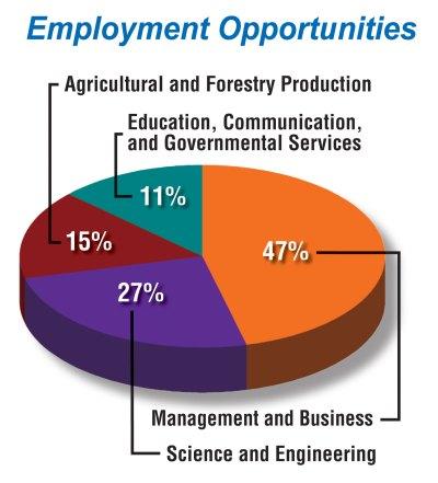 Job Pie Chart