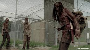 Danai Gurira The Walking Dead When the Dead Come Knocking