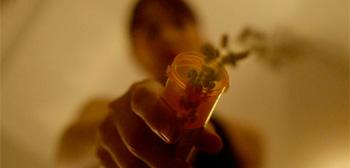 Rooney Mara Pills Side Effects