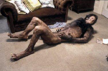 skyrim werewolf sex