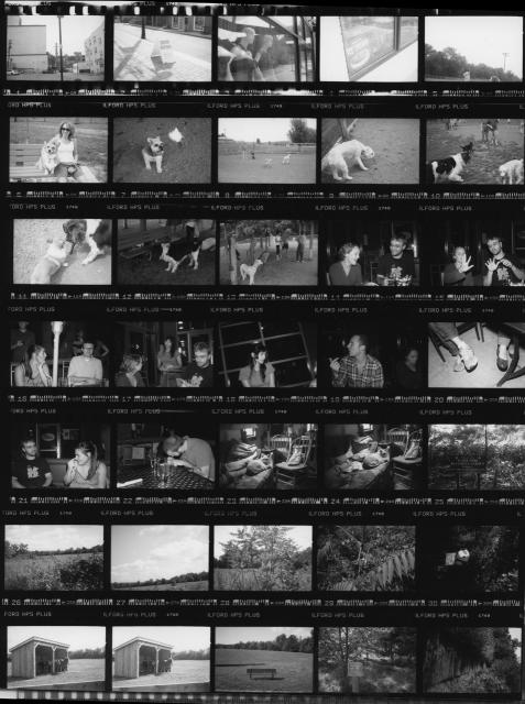 Proofing Your Black and White Photos - The Film Photography Project - sample contact sheet