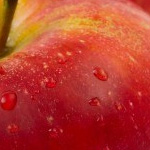 Apple to Announce Q2 2013 Earnings on April 23