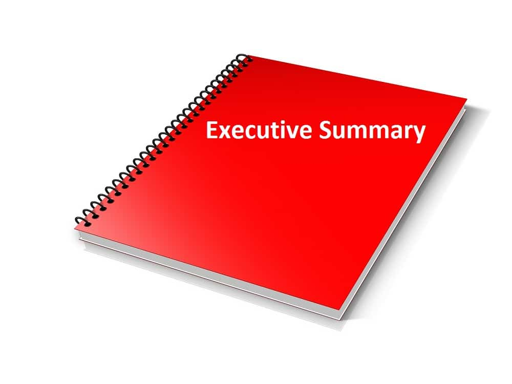 Business Plan Executive Summary - executive summary of a business plan