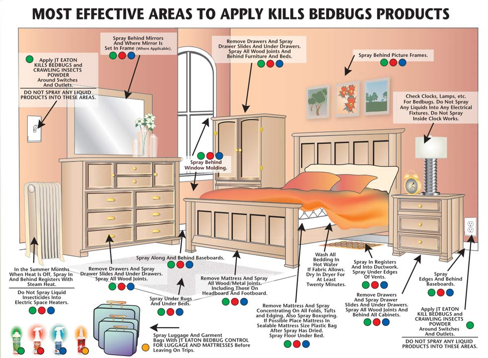 bed bug treatment | Bed Bug Exterminator