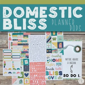 Messy Bun Planner Pops - Featured
