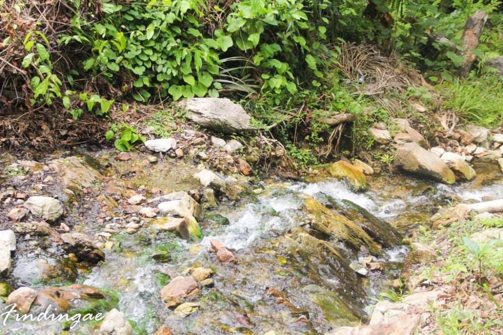 Ikogosi Warm Spring
