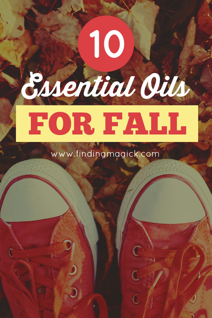 Diffuser Rituals 10 Essential Oils For Fall Diffuser Blends - Finding Magick