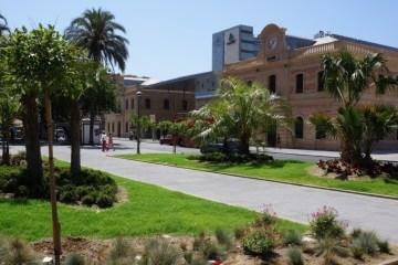 Quiet street in Malaga