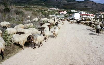 Saranda Albania