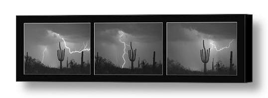 Southwest Saguaro Cactus Desert Storm Panorama Bw Canvas Print