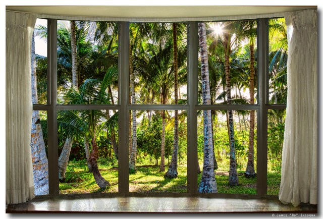 Tropical Jungle Reflections Bay Window View
