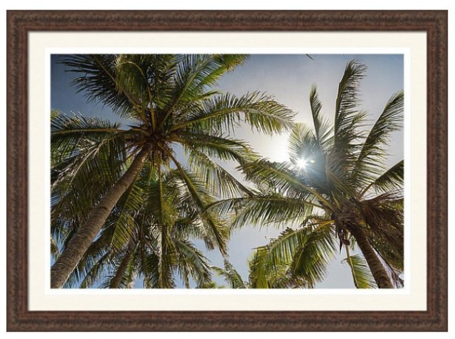 Tropical Sun Custom Framed Prints