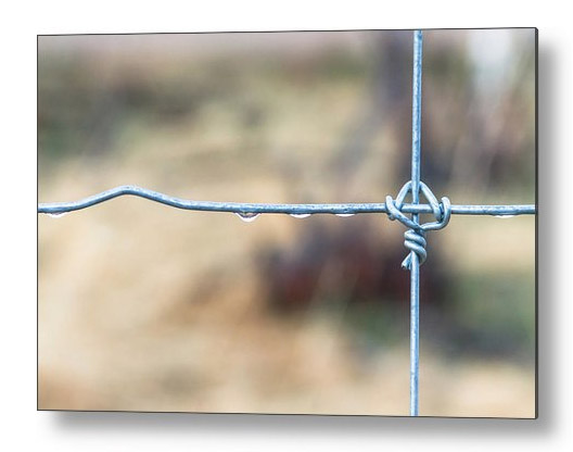 Wire Fence Metal Print