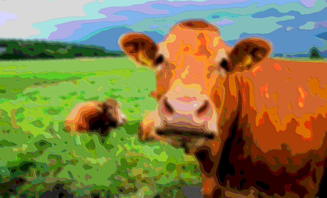 Animal Portrait Moo Cow Fine Digital Art - moo digital