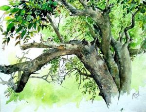 Indian watercolor paintings