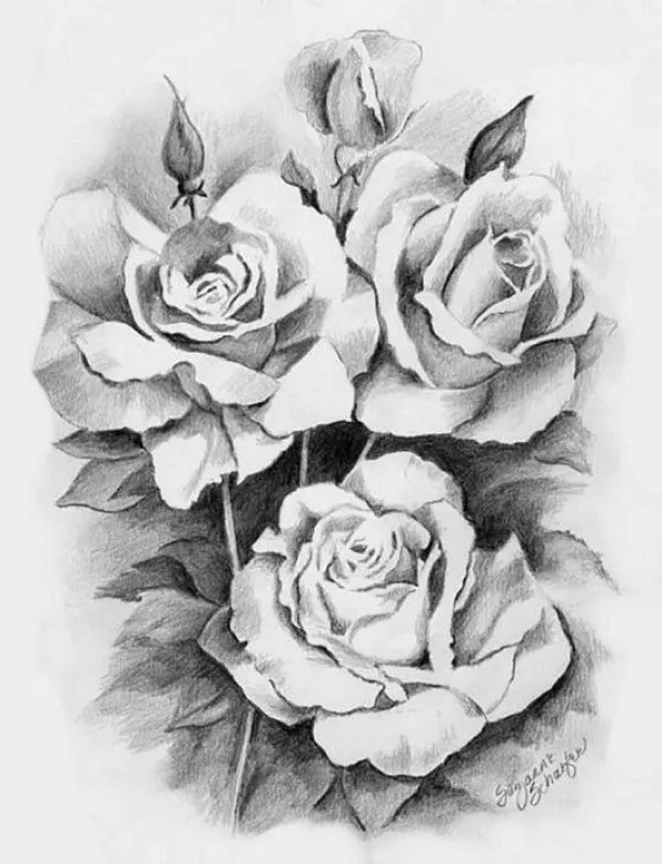 floral-pencil-drawing