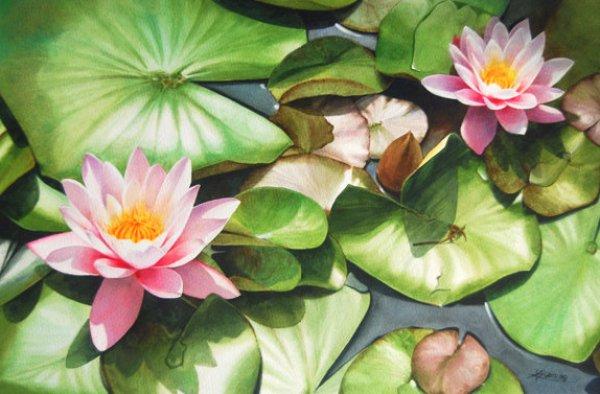 lotus-watercolor-painting