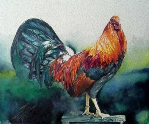 rooster-paintings