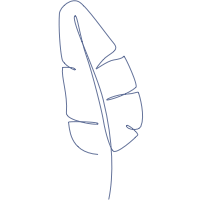 Bedding By Signoria Firenze Signoria Firenze Brands