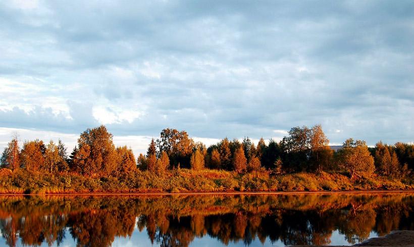 フィンランドの秋に見られる紅葉「Ruska(ルスカ)」