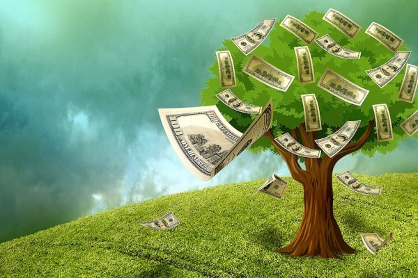 money-tree-cash-venture-capital-funding-1