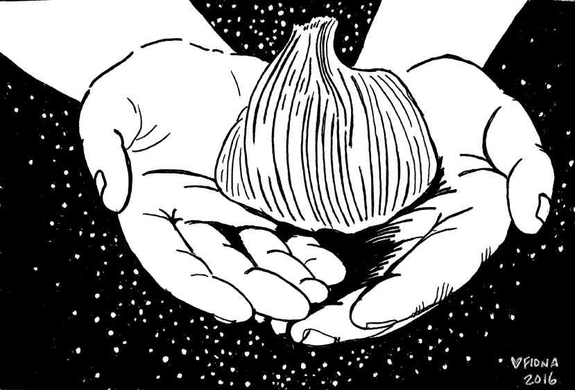 Garlic is a Healer, postcard, 2016.