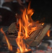 Everything You Need To Know About Burning Wood - Fire Pit ...