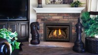GAS DIRECT VENT INSERTS | Fireplace Center KC