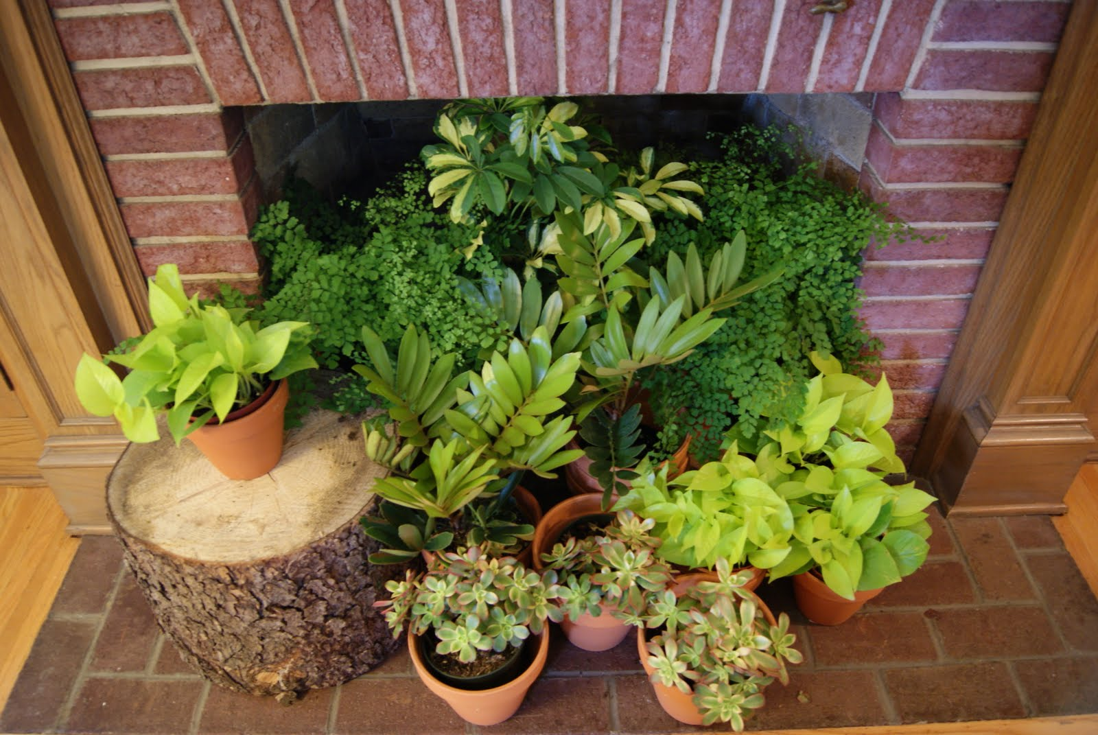 Home Decor Plants Summer Decorating Ideas For Your Fireplace The Blog At