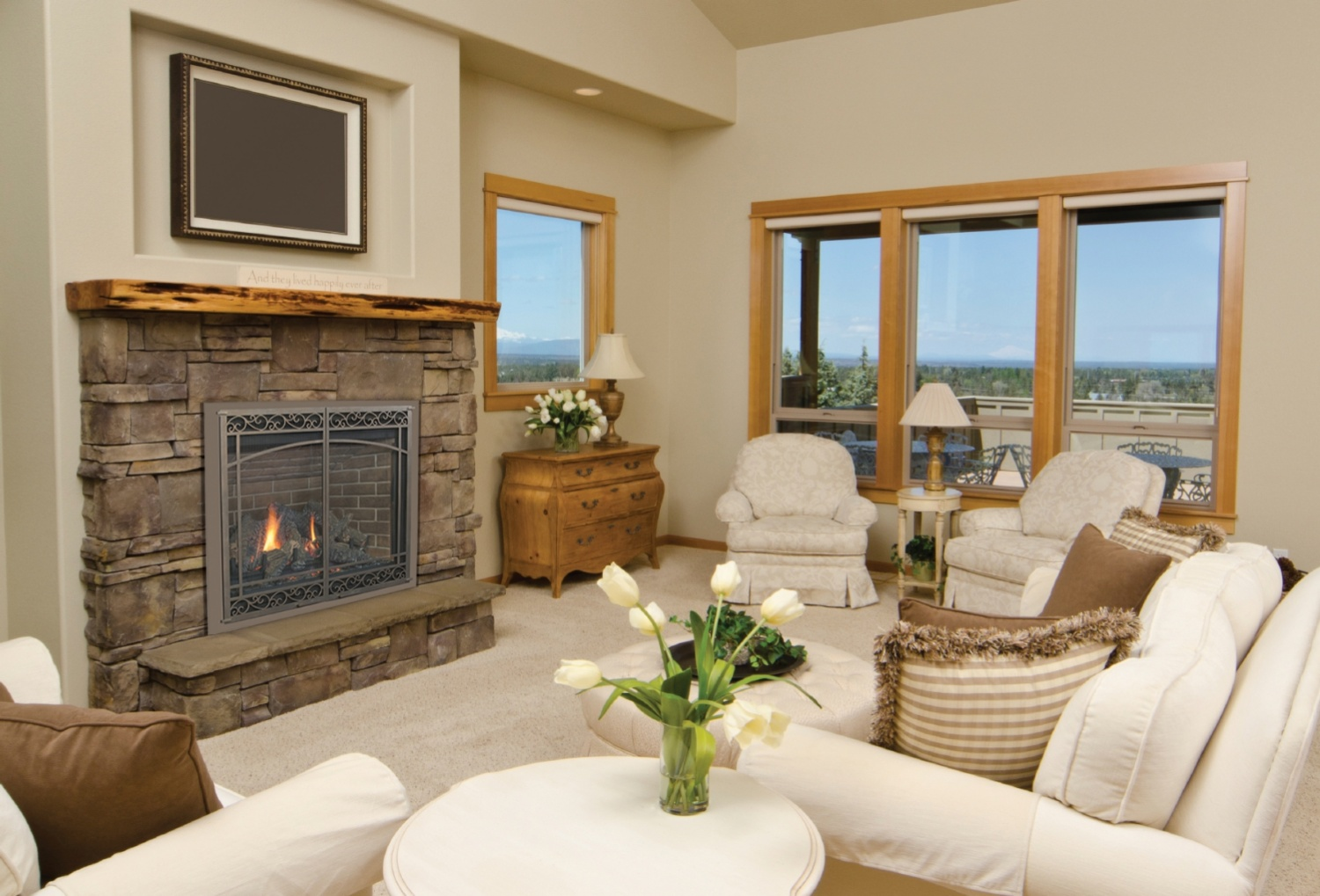 Direct Vent Gas Fireplace Ratings Ambiance Intrigue Gas Fireplace The Fireplace Place