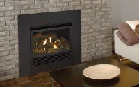 Discount Empire Mantis Direct Vent Gas Fireplace Insert ...