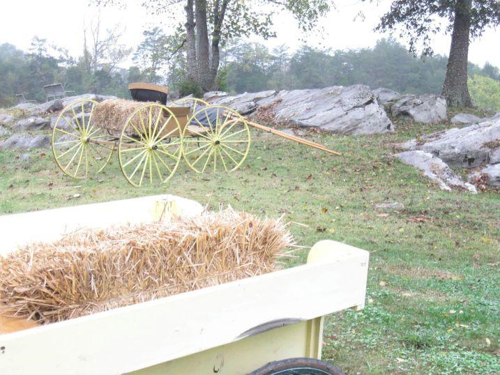 Wagon and Rock Garden