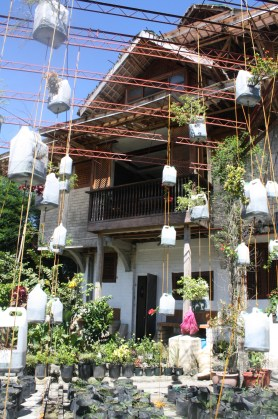 Hanging gardens?