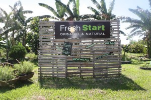 All organic and natural at the Fresh Start farm.