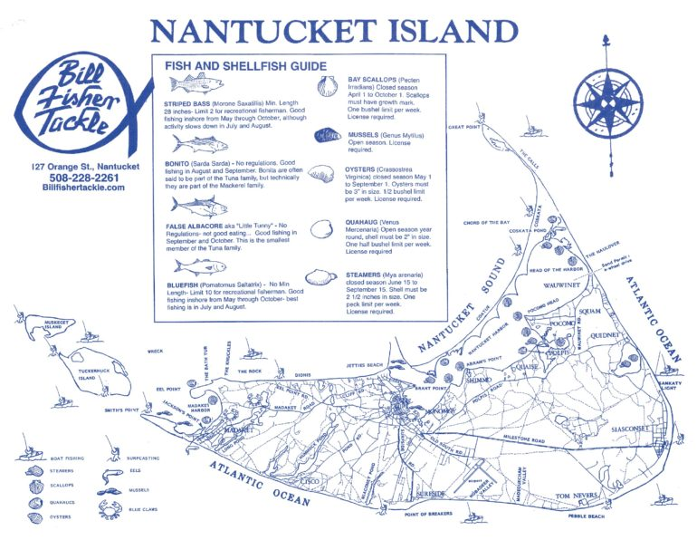 Cam\u0027s Fishing Report Archives - Fisher Real Estate Nantucket