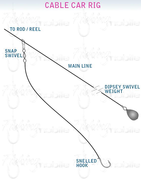 carp rigs diagrams suzuki cars