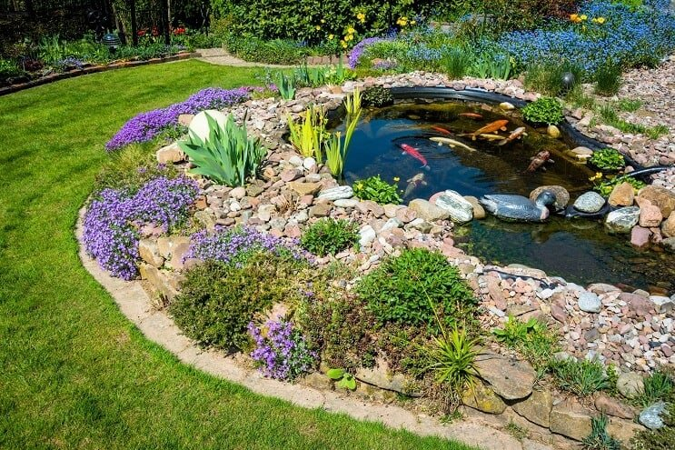 What Is A Koi Pond And How To Build Your Own Best Setup Ideas Fishkeeping World - Gartenteichgestaltung