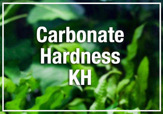 Beginners guide to aquarium carbonate hardness (KH)