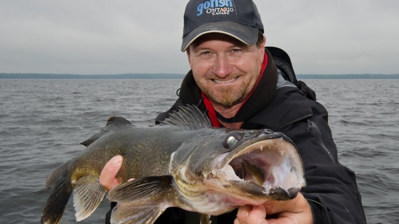452_DSC6338_pete_walleye_03