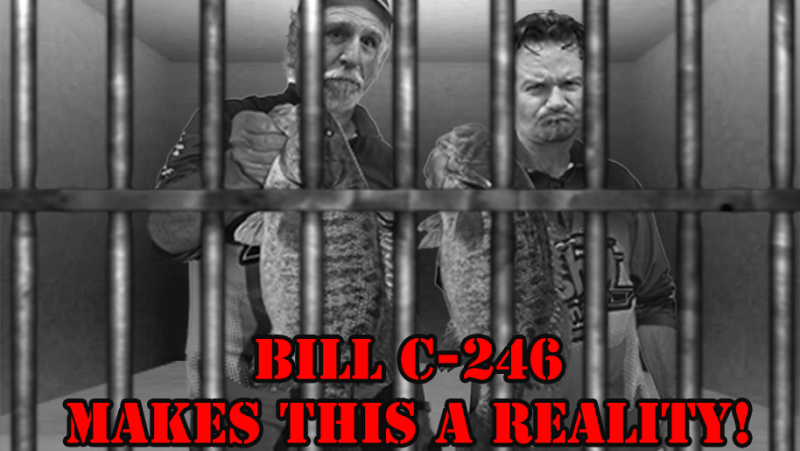 Canadian Angeles will do Jail time if Bill C-246 becomes law