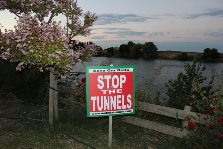 Deep Regulatory Capture: The Links Between Delta Tunnels Plan and MLPA Initiative