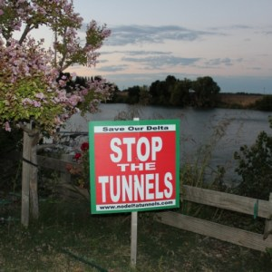 sm_800_stop_the_tunnels