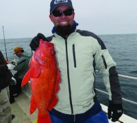 Big vermilion rockfish showed up in big numbers for anglers probing the bottom during the September 15 Cal Kellogg School of Fishing/Golden Eye 2000 trip to the rich waters surrounding the Farallon Islands.